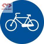 Pista pentru biciclete si mopede, D8